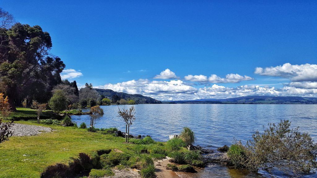 what to do in Rotorua