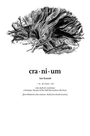 cranium by lee scarratt