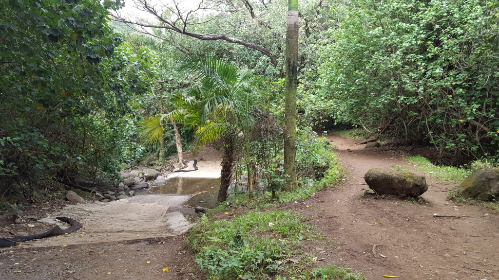 the haiku stairs trail