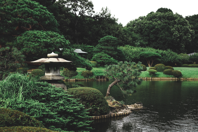 Shinjuku Gyoen Gardens, Tokyo, Japan