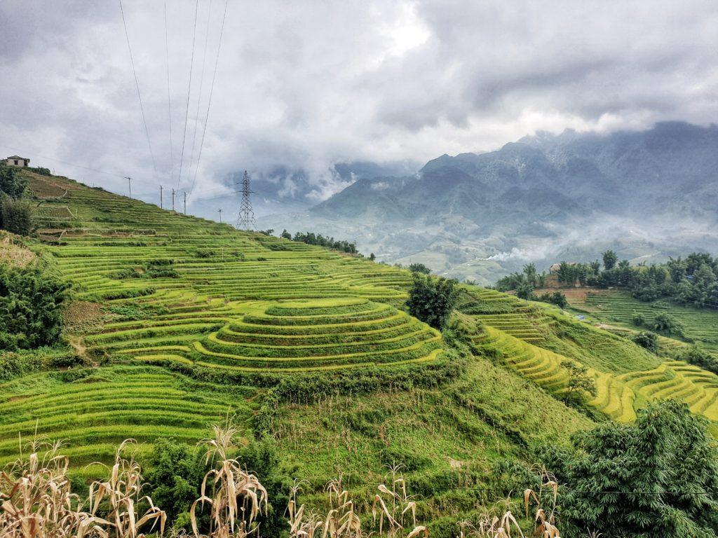Sapa Rice Fields, Sapa. Vietnam