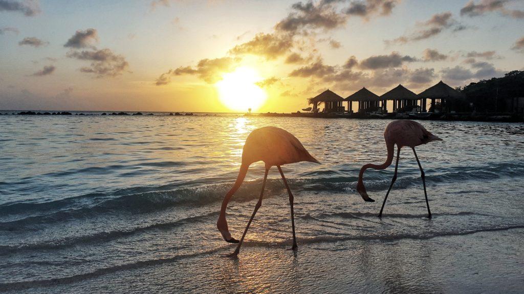 Renaissance Aruba Resort & Casino, Aruba, Caribbean